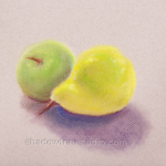 Apple and Pear Study