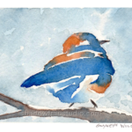 Bluebird In Snow 2