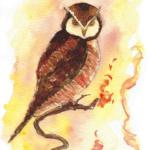 Molten Owl